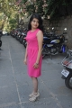 New Telugu Heroine Meenakshi in Pink Dress Photos