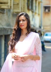 Tamil Actress Meenakshi Dixit New Stills HD