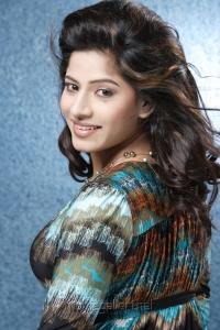 Tamil Actress Meenal Hot Spicy Photoshoot Pics
