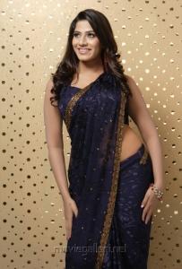 Tamil Actress Meenal Hot in Saree Photoshoot Pics