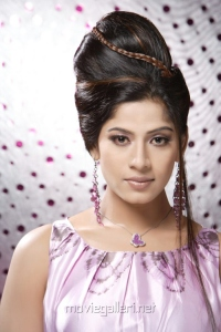 Tamil Heroine Meenal Hot Photoshoot Pics