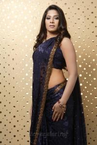 Tamil Actress Meenal in Saree Hot Photoshoot Pics