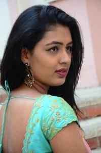 Rangu Bommala Katha Heroine Meenal Meenu Half Saree Photos