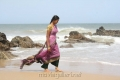 Actress Thanmai Hot Saree Stills in Meenavan