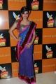 Meera Chopra Latest Hot Stills in Designer Saree