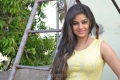 Meera Chopra Hot Pictures at Killadi Press Meet