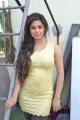 Actress Meera Chopra Pictures at Killadi Press Meet