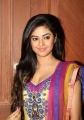 Actress Meera Chopra in Churidar Hot Photos