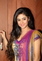 Actress Meera Chopra Latest Hot Photos