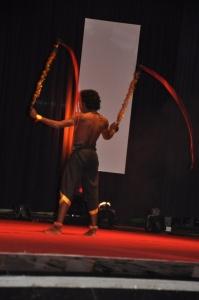 Mega Aadavar Awards 2012 Photos