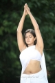 Jakkamma Actress Meghana Raj Hot Spicy Pics