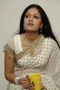Meghana Raj in White Saree Photoshoot Stills