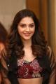Actress Mehreen Kaur Pirzada New Photos in Embellished Crop Top With Black Lehenga