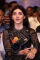 Actress Mehreen Latest Photos @ F2 Fun and Frustration Success Meet