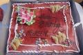 Mehreen Pirzada Birthday Celebrations 2019 Stills