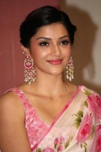 Actress Mehreen Kaur Pirzada New Hot Pics in Floral Design Saree