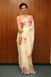 Actress Mehreen Pirzada New Hot Pics in Floral Design Saree