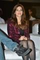 Actress Mehreen Kaur Pirzada Photos @ F2 Fun & Frustration Press Meet
