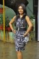 Actress Risha @ Mei Maranthen Movie Trailer Launch Stills