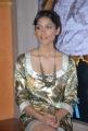 Melanie Kannokada Hot Stills at Love Lies & Seeta PM