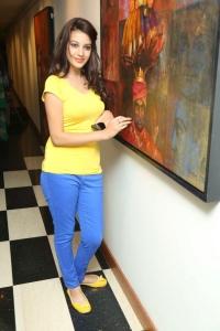 Diksha Panth @ Memories & Reflections Paintng Exhibition by Artist P.Rajasekhar Photos