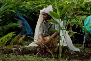 Merku Thodarchi Malai Movie Actress Gayathri Krishna Stills