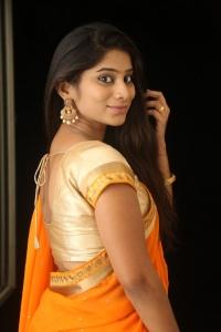 Telugu Actress Midhuna Saree Hot Photos