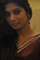 Telugu Actress Midhuna Hot Photos in Saree
