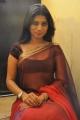Telugu Actress Mithuna Hot Photos in Saree