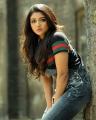 Actress Mirnaa Menon Photoshoot Stills