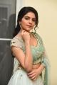 Heroine Misha Narang Photos @ Thellavarithe Guruvaram Pre Release
