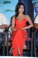 Actress Priyanka Bhardwaj, @ Mister 420 Logo Launch Photos