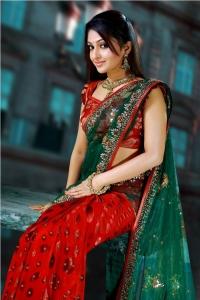 Mithra Kurian Gorgeous Saree Photo Shoot Stills