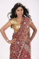 Actress Mithuna Hot in Saree Photoshoot Images