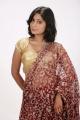 Telugu Actress Mithuna Hot in Saree Photoshoot Images