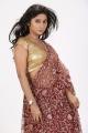 Actress Midhuna Hot in Saree Photoshoot Images