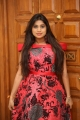 Actress Midhuna New Pics in Red Dress