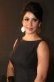 Beautiful Model Shivani Sen Photos