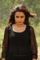Actress Trisha Mohini Movie Images HD