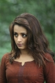 Actress Trisha Mohini Photos HD