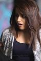 Mohini Movie Actress Trisha Photos HD