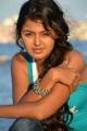 Vennela 1 1/2 Movie Heroine Monal Gajjar Latest Hot Pics