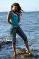 Vennela 1 1/2 Movie Heroine Monal Gajjar Hot Pics
