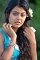 Vennela One and Half Movie Heroine Monal Gajjar Hot Pics