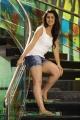 Actress Nikki Galrani in Motta Siva Ketta Siva Movie Stills