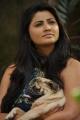 Actress Daisy Shah in Mounamana Neram Stills