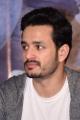 Actor Akhil Akkineni @ Mr Majnu Movie Success Meet Stills