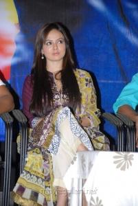 Sana Khan @ Mr.Nookayya Platinum Disc Function Stills