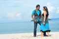 Sunil, Isha Chawla in Mr.Pellikoduku Movie Photos