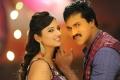 Isha Chawla, Sunil in Mr.Pellikoduku Telugu Movie Stills